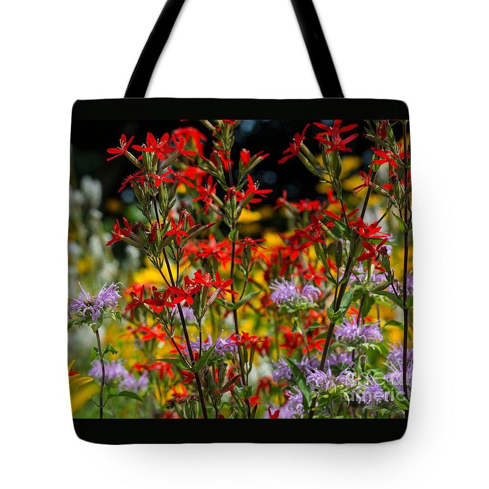 Fiona Craig Tote Bag featuring the photograph Prairie Wildflowers 2 by Fiona Craig