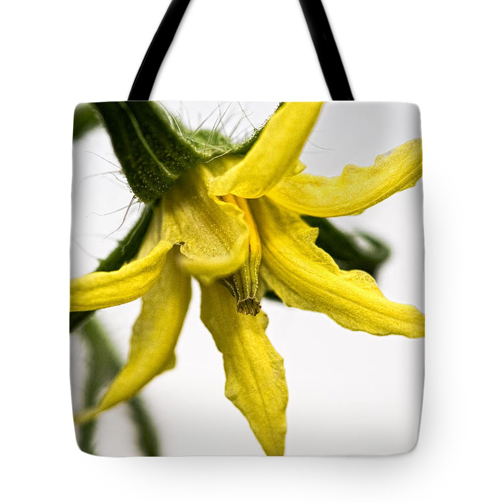 Tomato Tote Bag featuring the photograph Pre-tomato by Christopher Holmes