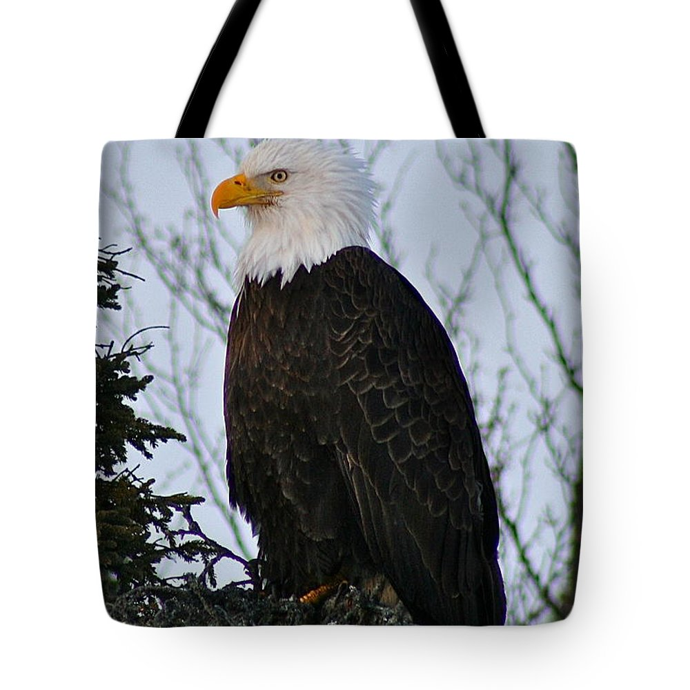 Eagle Tote Bag featuring the photograph Predator Profile by Rick Monyahan