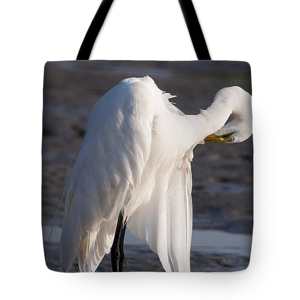 Egret Tote Bag featuring the photograph Preening by Kenneth Albin