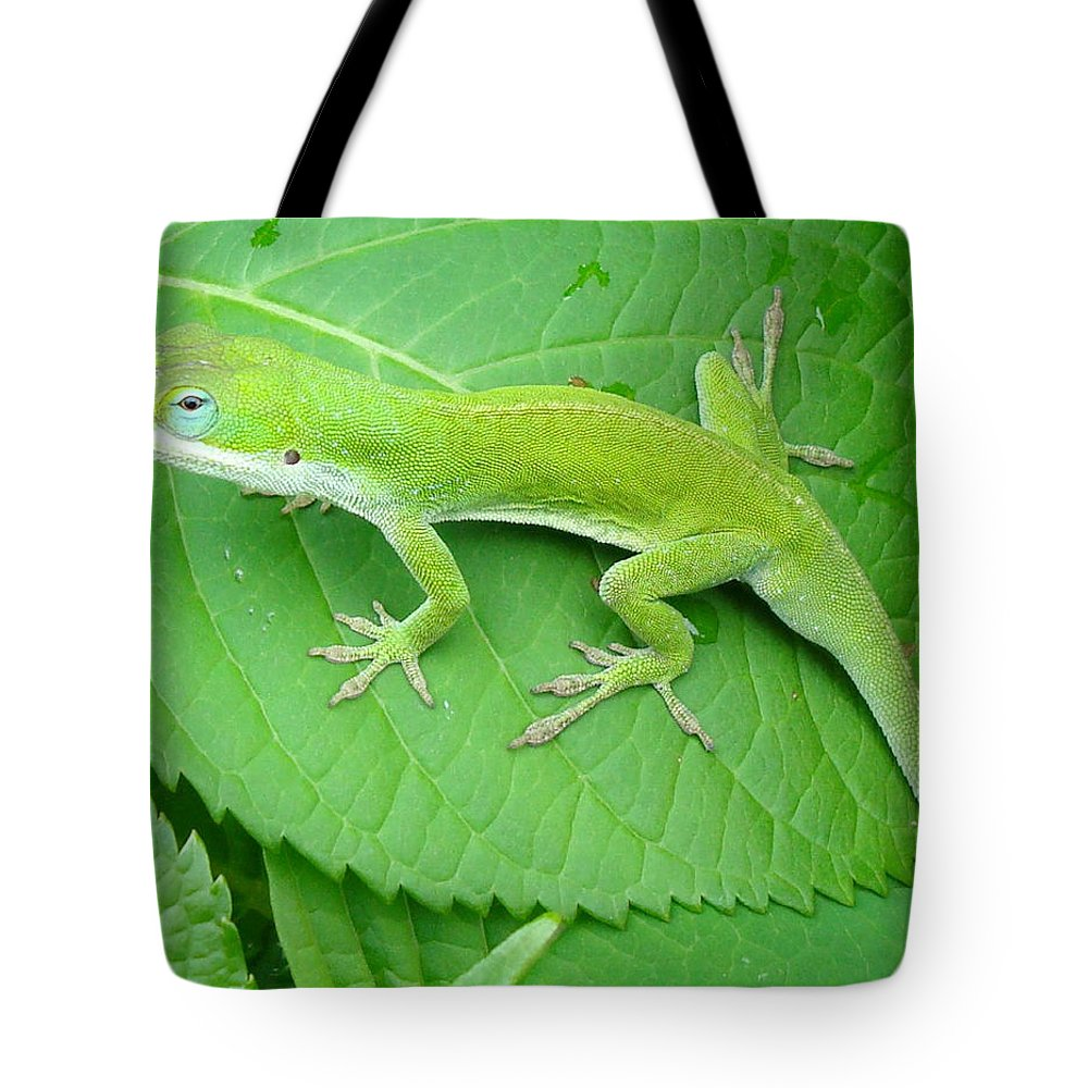 Lizard Tote Bag featuring the photograph Pretty Blue Eyes by Kathy Bucari