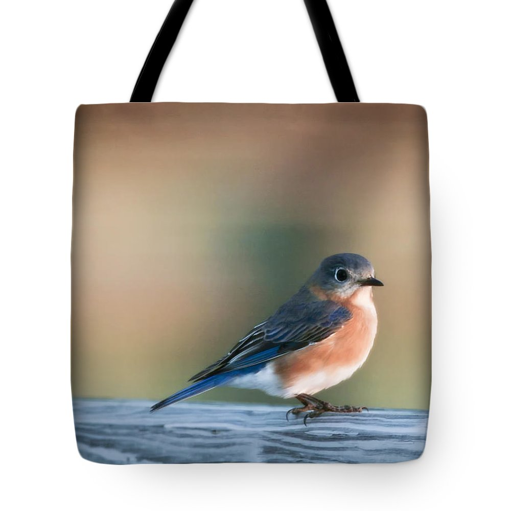 Bird Tote Bag featuring the photograph Pretty In Blue by Phill Doherty