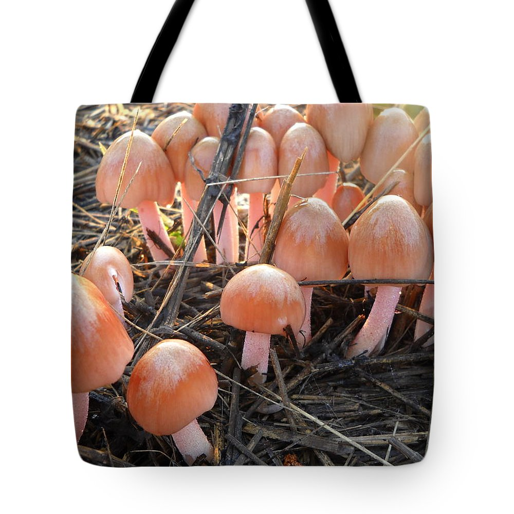 Mushrooms Tote Bag featuring the photograph Pretty In Pink Mushrooms by Kent Lorentzen