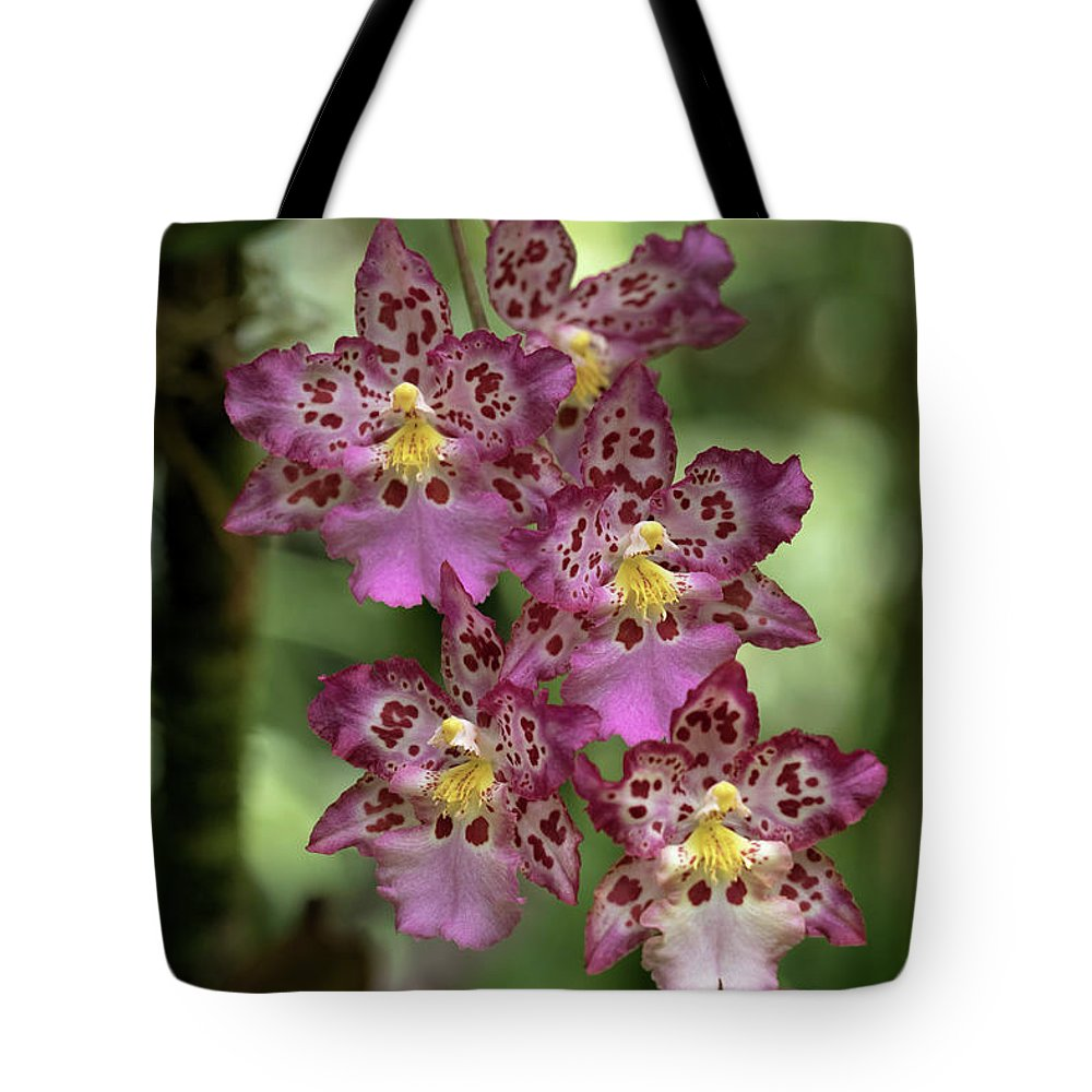 Orchids Tote Bag featuring the photograph Pretty In Pink by Susan Rissi Tregoning