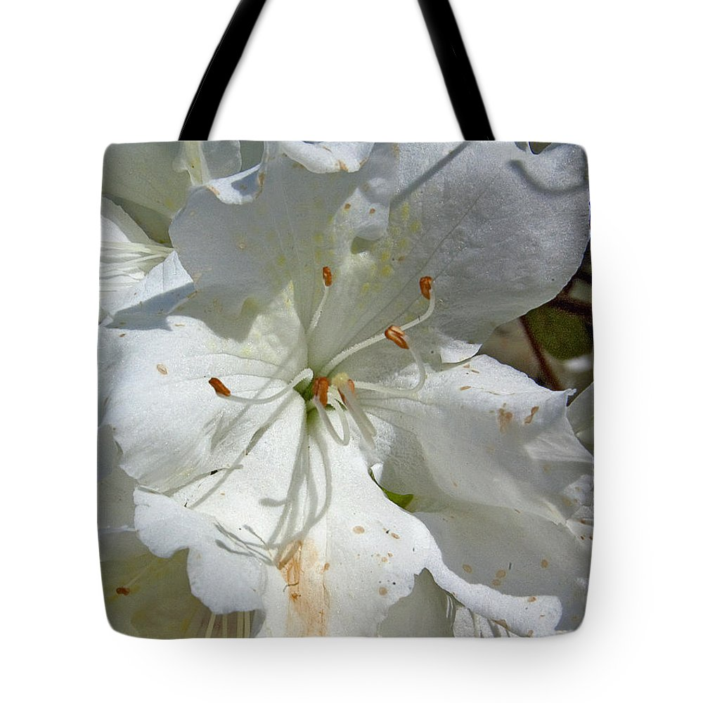 Flower Tote Bag featuring the photograph Pretty In White by Gary Adkins
