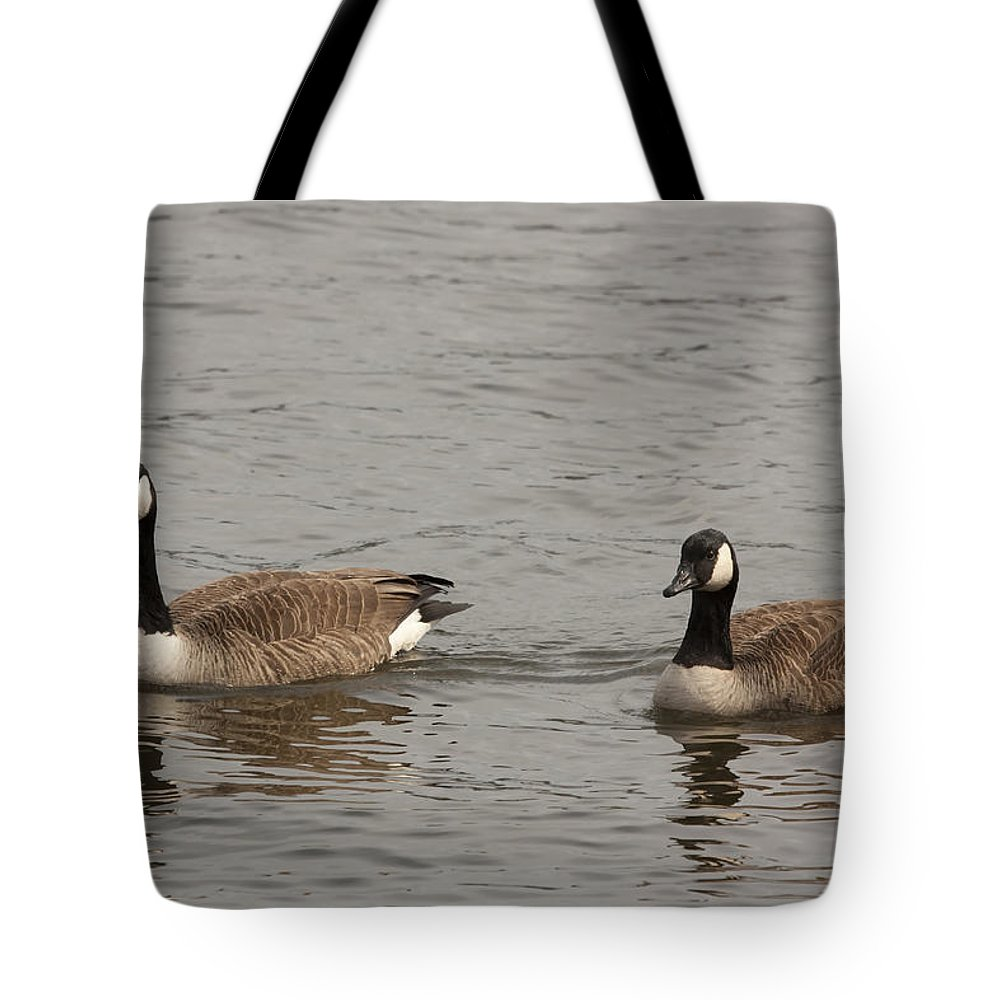 Rivers Tote Bag featuring the photograph Pretty Pair by Mary Haber