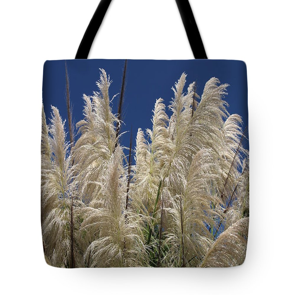 Landscape Tote Bag featuring the photograph Pretty Pampas by Cheryl Kostanesky
