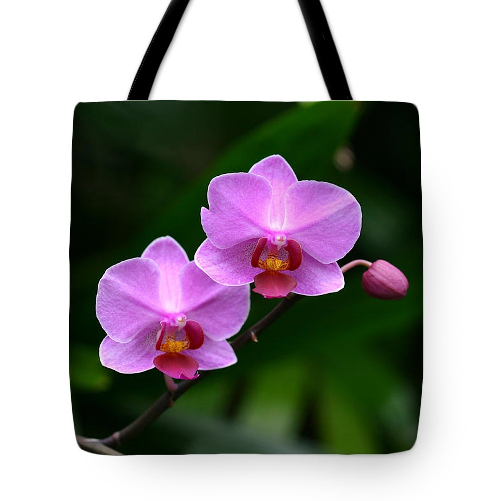 Orchid Pink Purple Plant Green Photography Photograph Tote Bag featuring the photograph Pretty Pink And Proud by Shari Jardina
