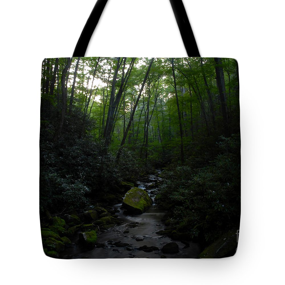 Primordial Forest Tote Bag featuring the painting Primordial Forest by David Lee Thompson
