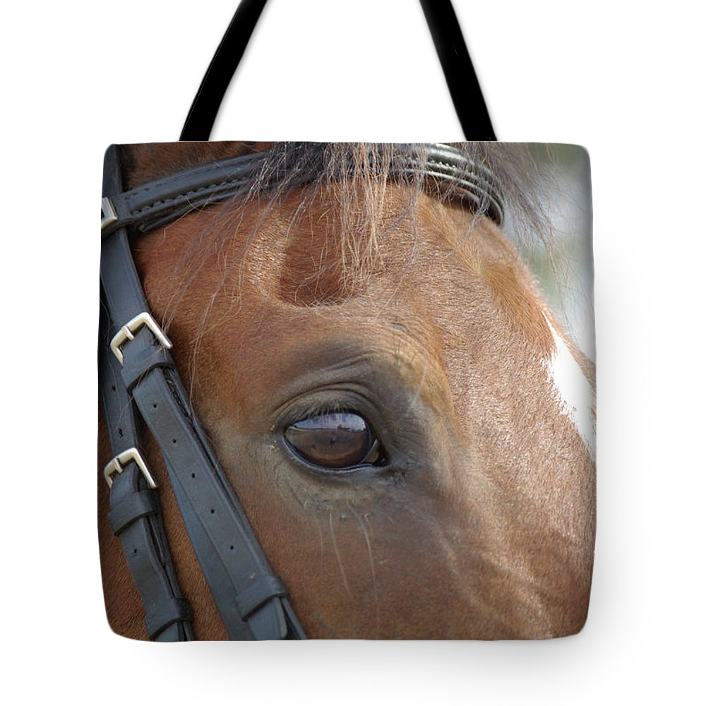 Horse Tote Bag featuring the photograph Prinz by Jim And Emily Bush