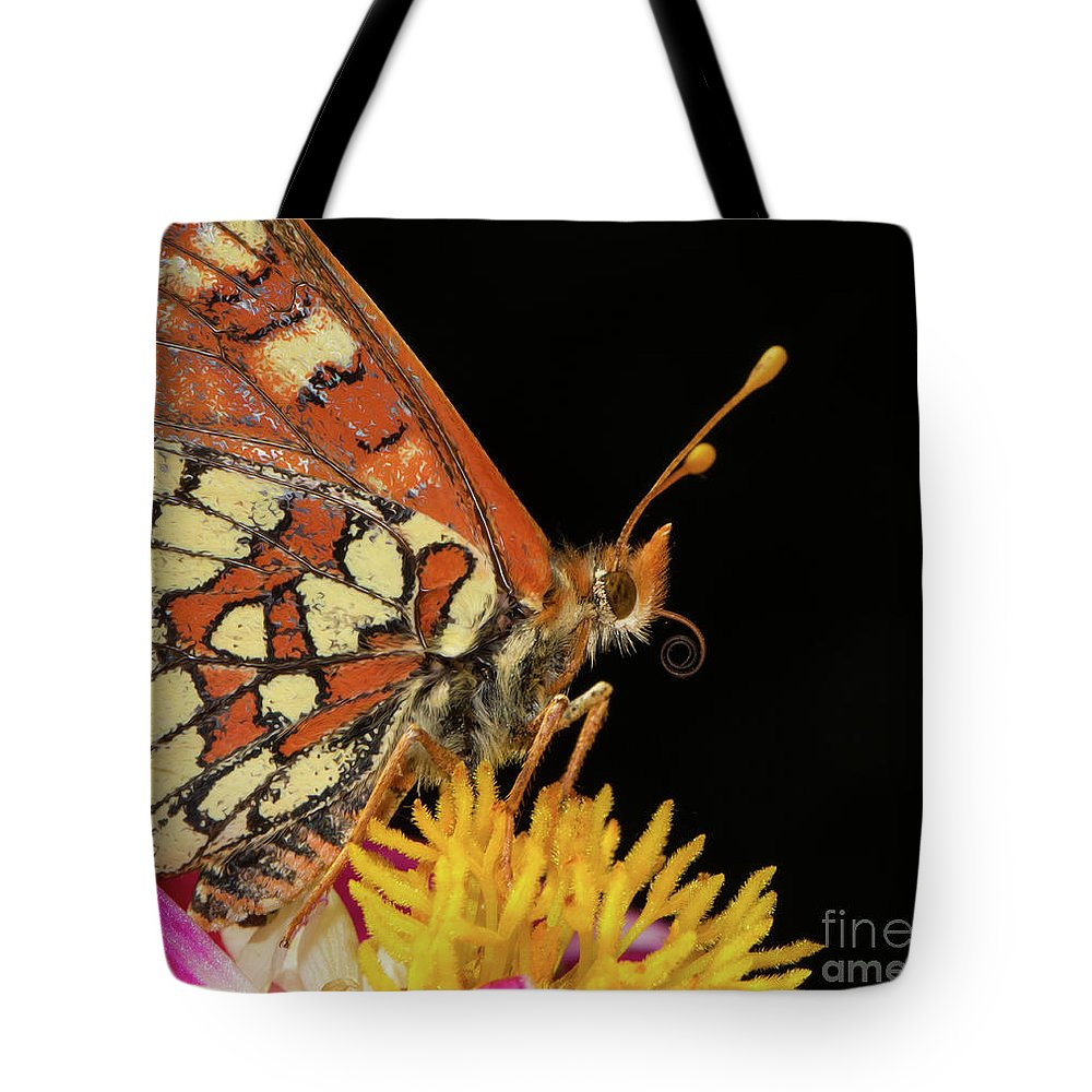 Butterfly Tote Bag featuring the photograph Profile Of A Butterfly by Mimi Ditchie