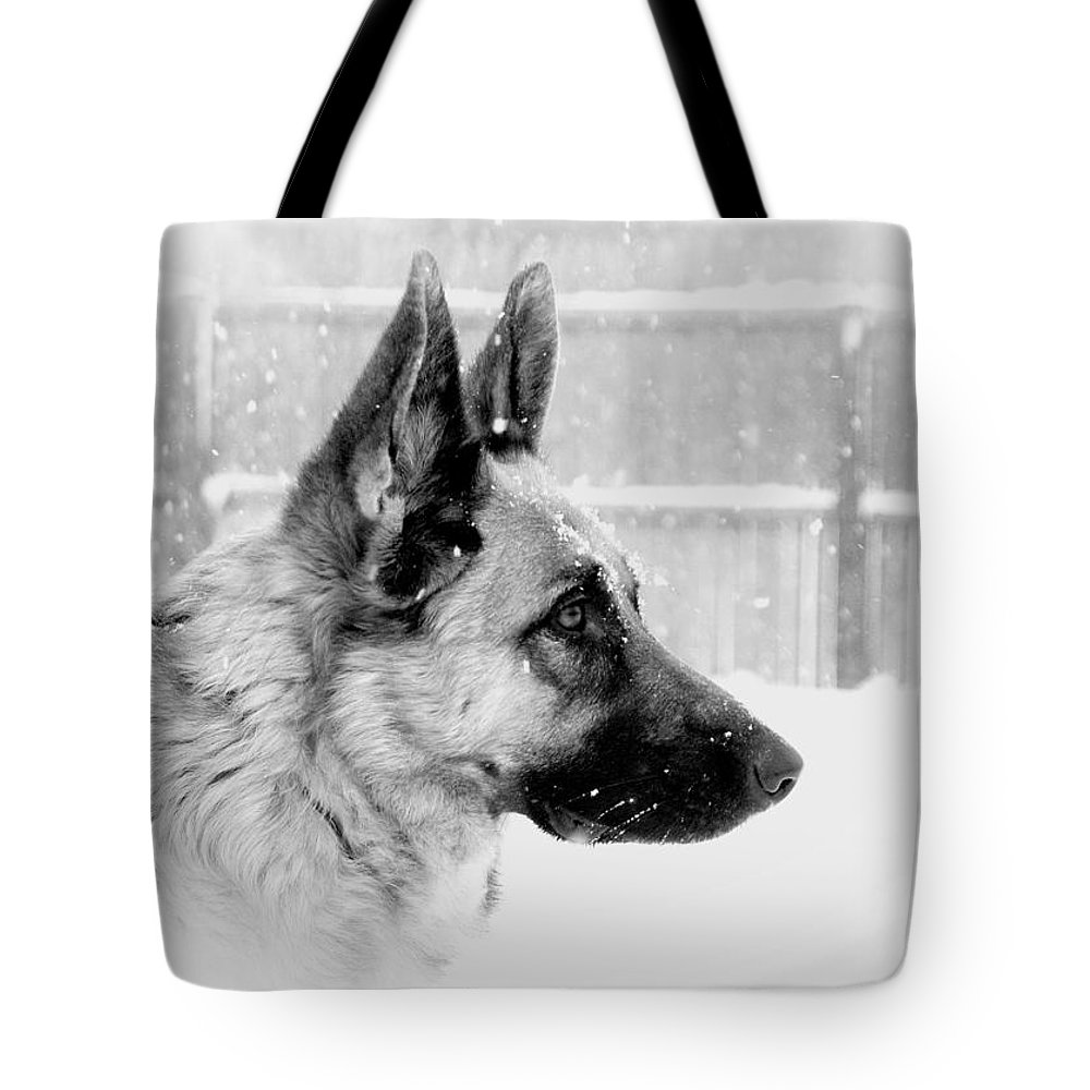 German Shepherd Dogs Tote Bag featuring the photograph Profile Of A German Shepherd by Angie Tirado