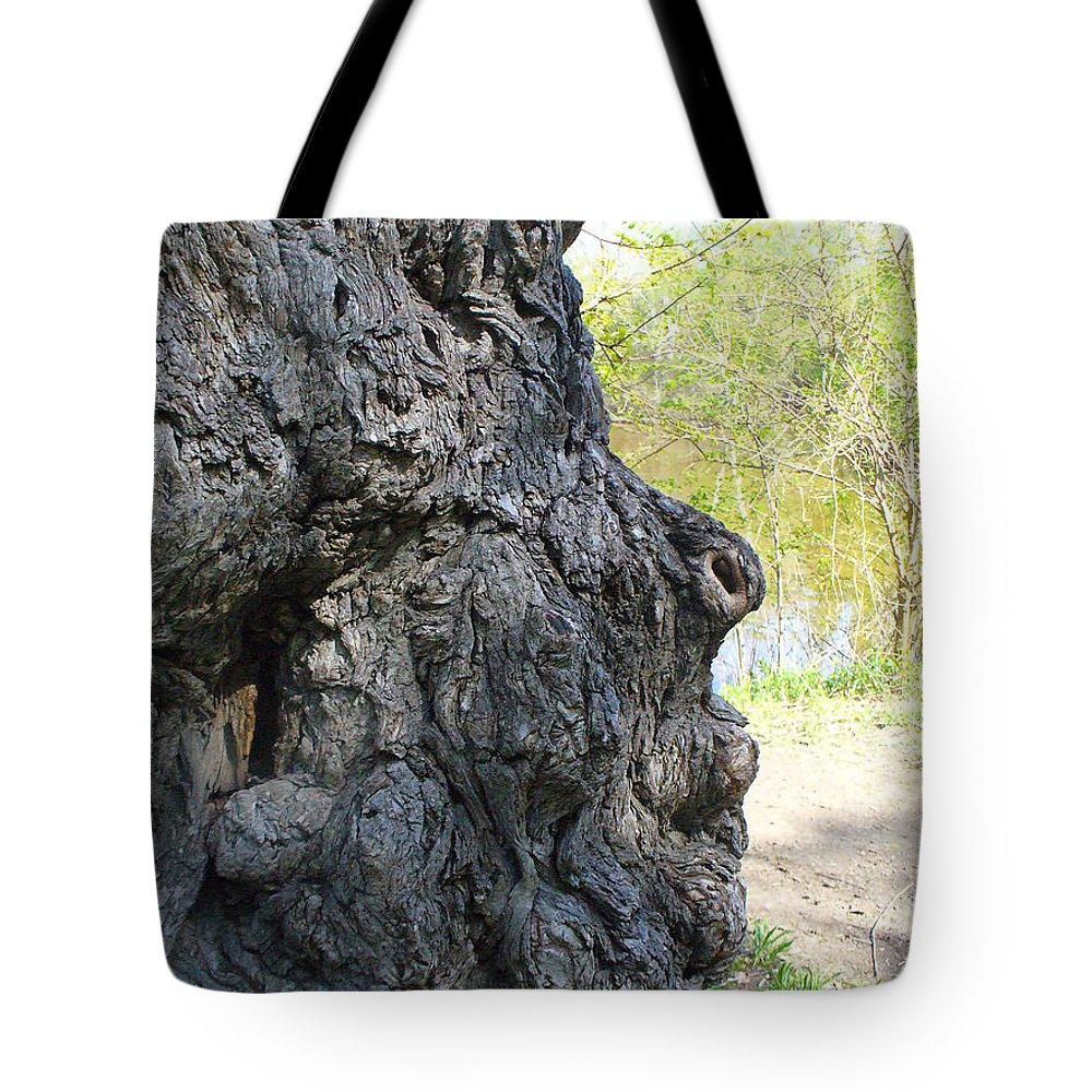 Tree Tote Bag featuring the photograph Profile Of An Ancient Willow by Peggy King