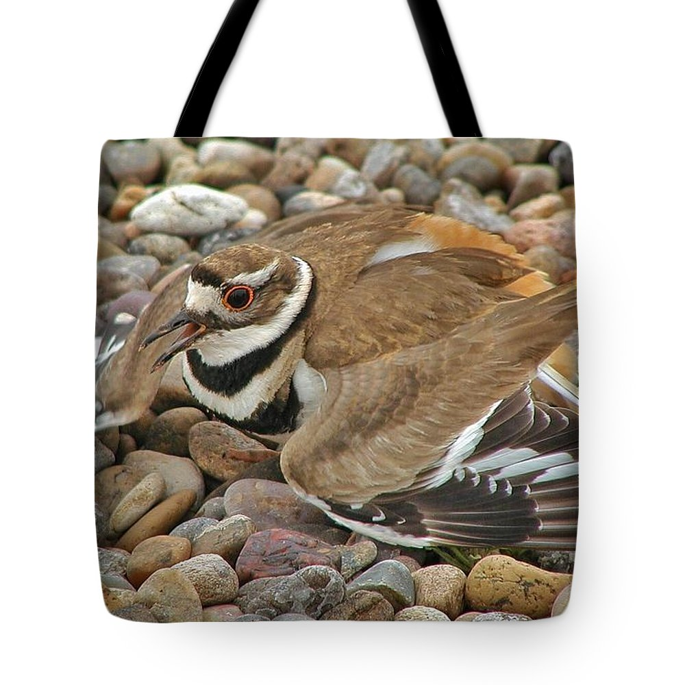 Killdeer Tote Bag featuring the photograph Protecting The Nest by Buck Buchanan