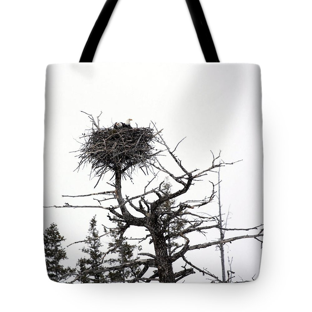 Eagles Tote Bag featuring the photograph Protecting The Nest by Mary Haber