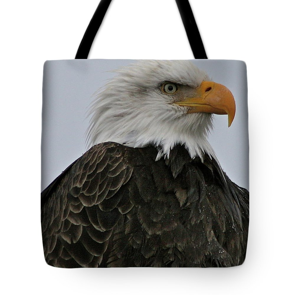 Eagle Tote Bag featuring the photograph Proud by Rick Monyahan