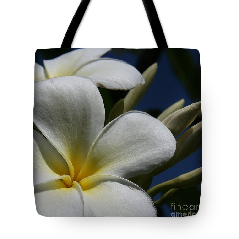 Pua lena pua lei aloha tropical plumeria maui hawaii tote bag for aloha tote bag featuring the photograph pua lena pua lei aloha tropical plumeria maui hawaii by izmirmasajfo