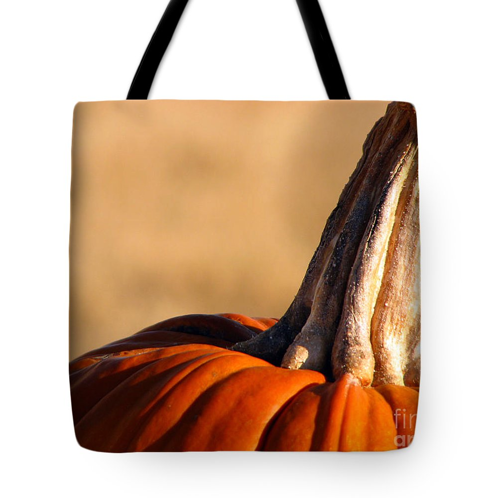 Pumpkins Tote Bag featuring the photograph Pumpkin by Amanda Barcon