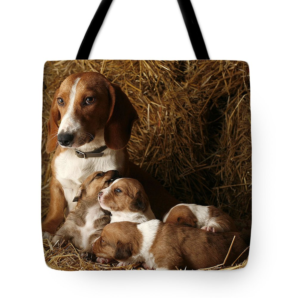 Animal Tote Bag featuring the photograph Puppies by Rafa Rivas