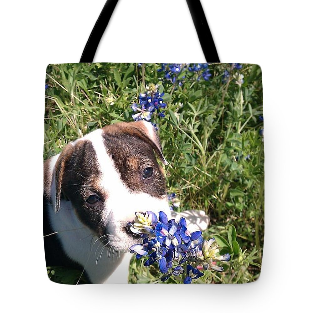 Puppy Tote Bag featuring the photograph Puppy In The Blubonnets by Marie Millard