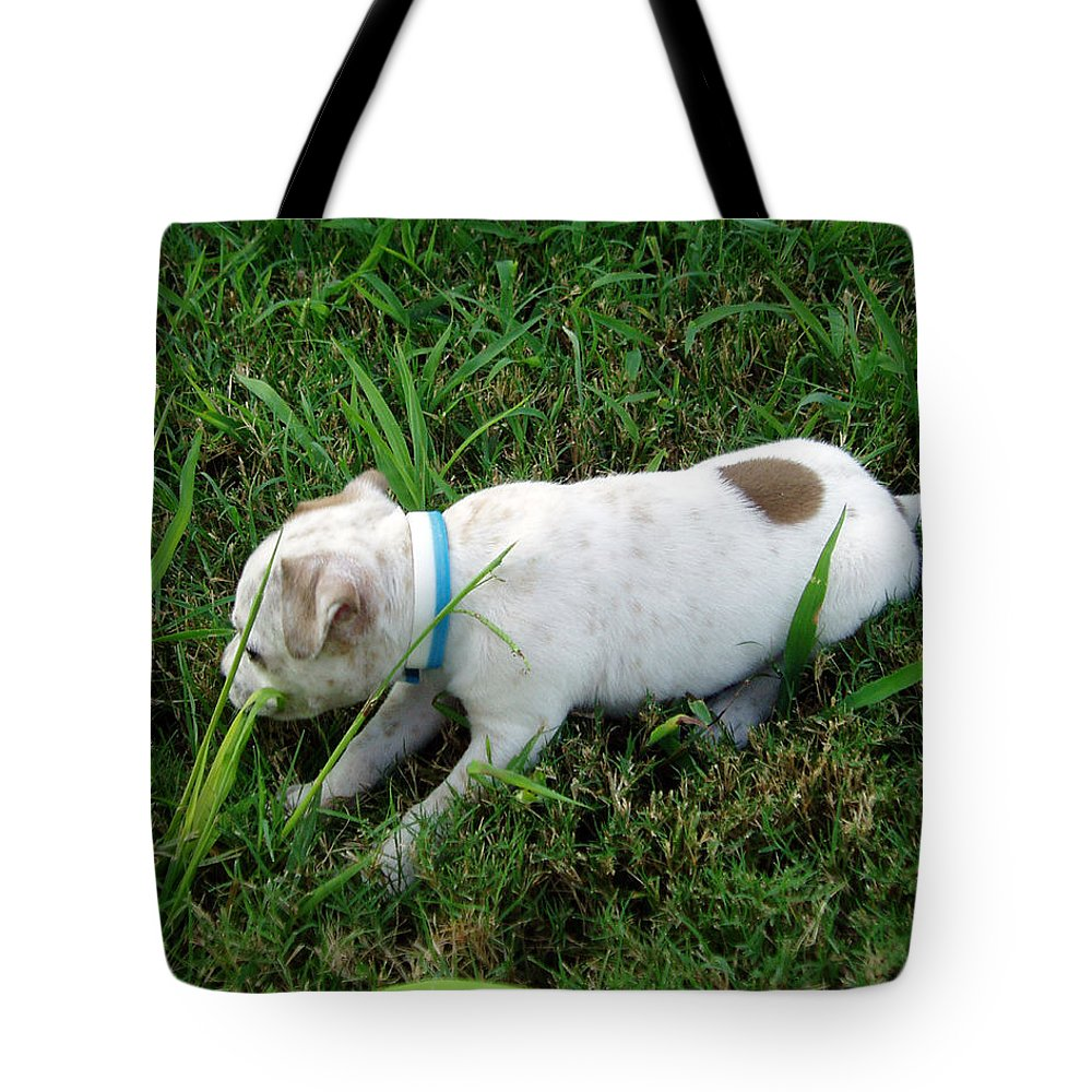 Puppy Tote Bag featuring the photograph Puppy Love2 by Genia Owens