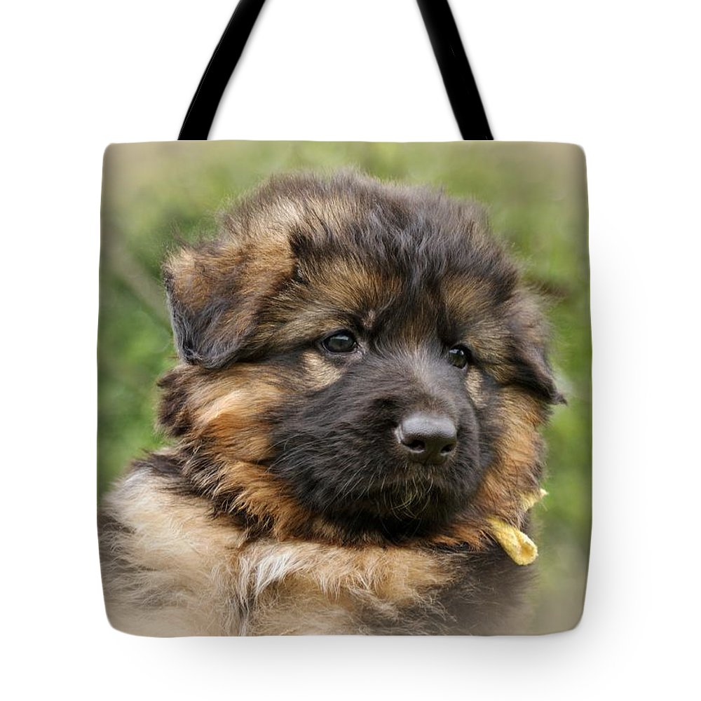 German Shepherd Tote Bag featuring the photograph Puppy Portrait II by Sandy Keeton