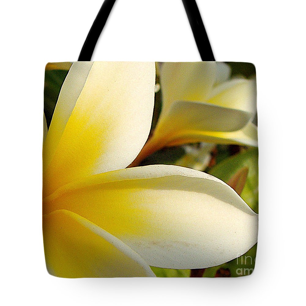 Flowers Tote Bag featuring the photograph Pure Beauty Plumeria Flowers by Jerome Stumphauzer