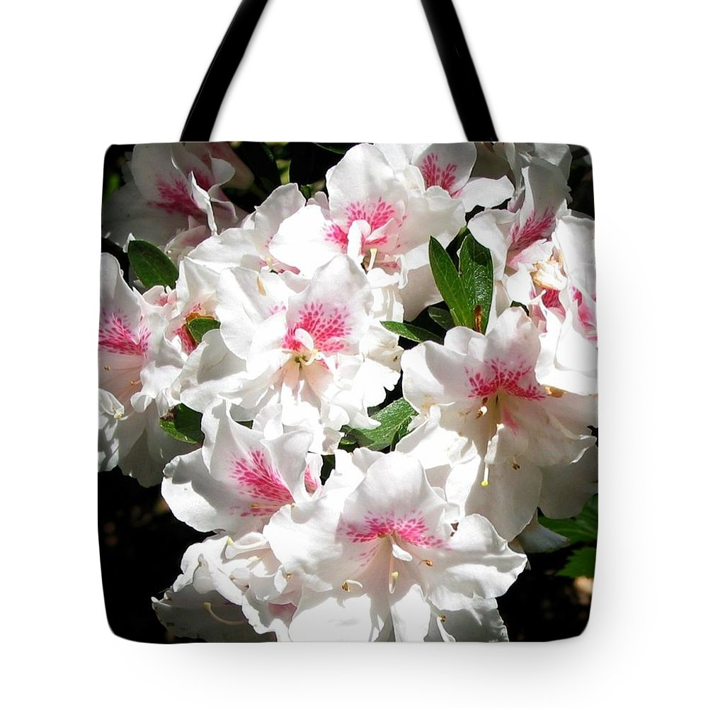White Azaleas With A Bit Of Pink Tote Bag featuring the photograph Pure Beauty by Susan Lindblom