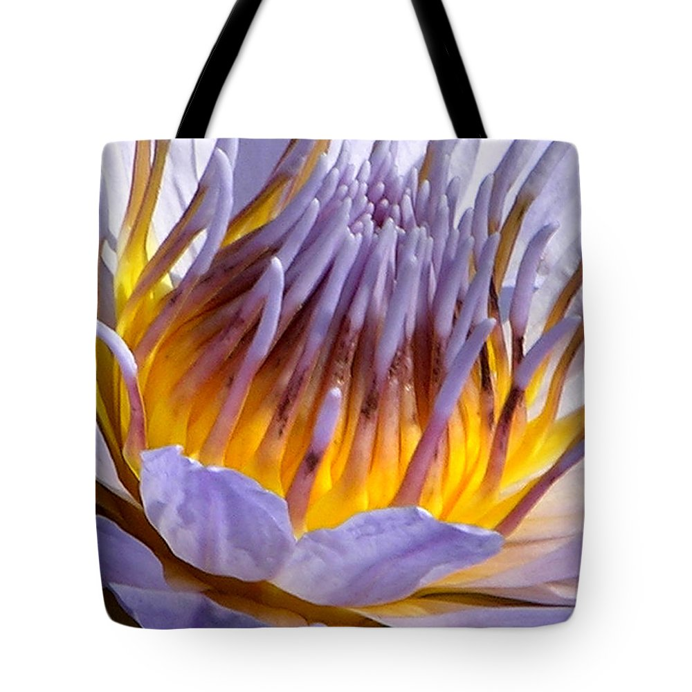 Water Lily Tote Bag featuring the photograph Purple and Gold Lily by John Lautermilch