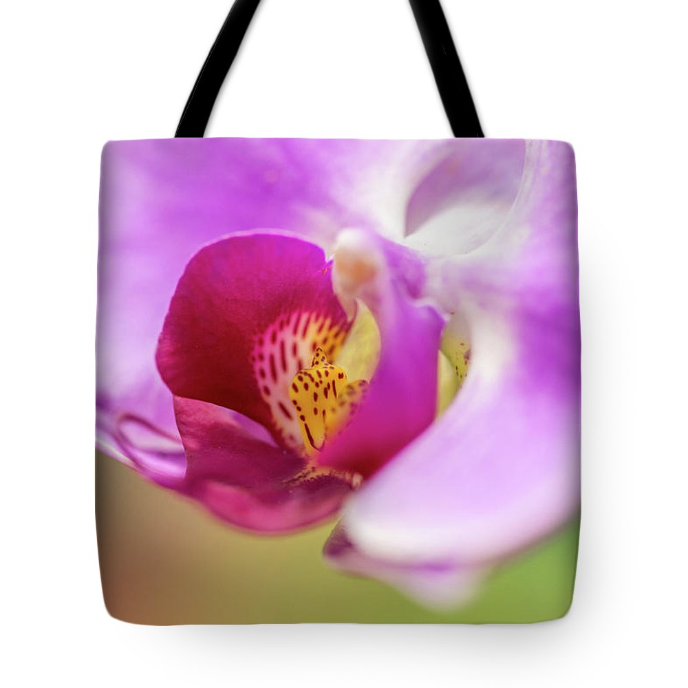Orchid Tote Bag featuring the photograph Purple And White Orchid 2 by Steven Jones