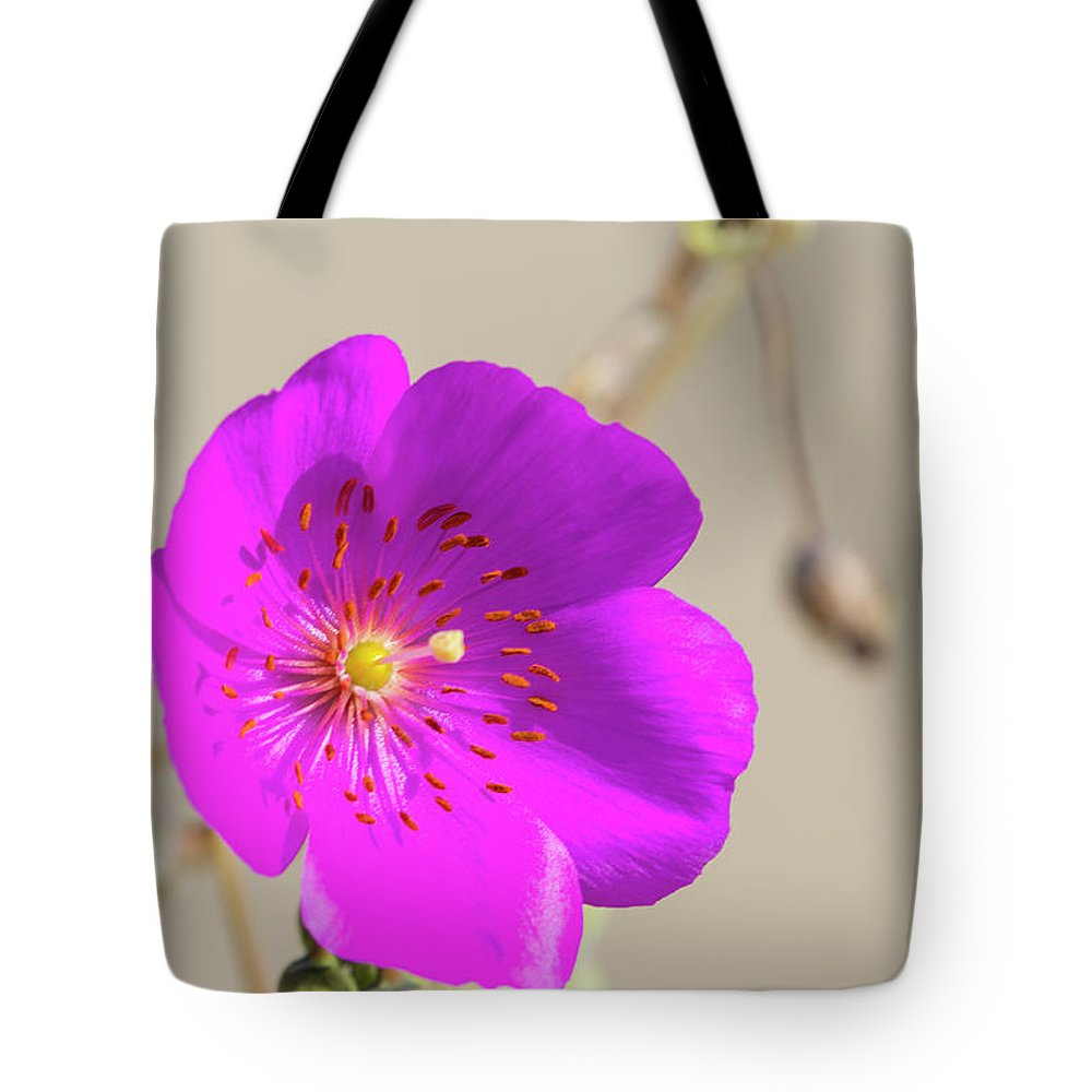 Garden Flowers Tote Bag featuring the photograph Purple Bloom by David Zanzinger