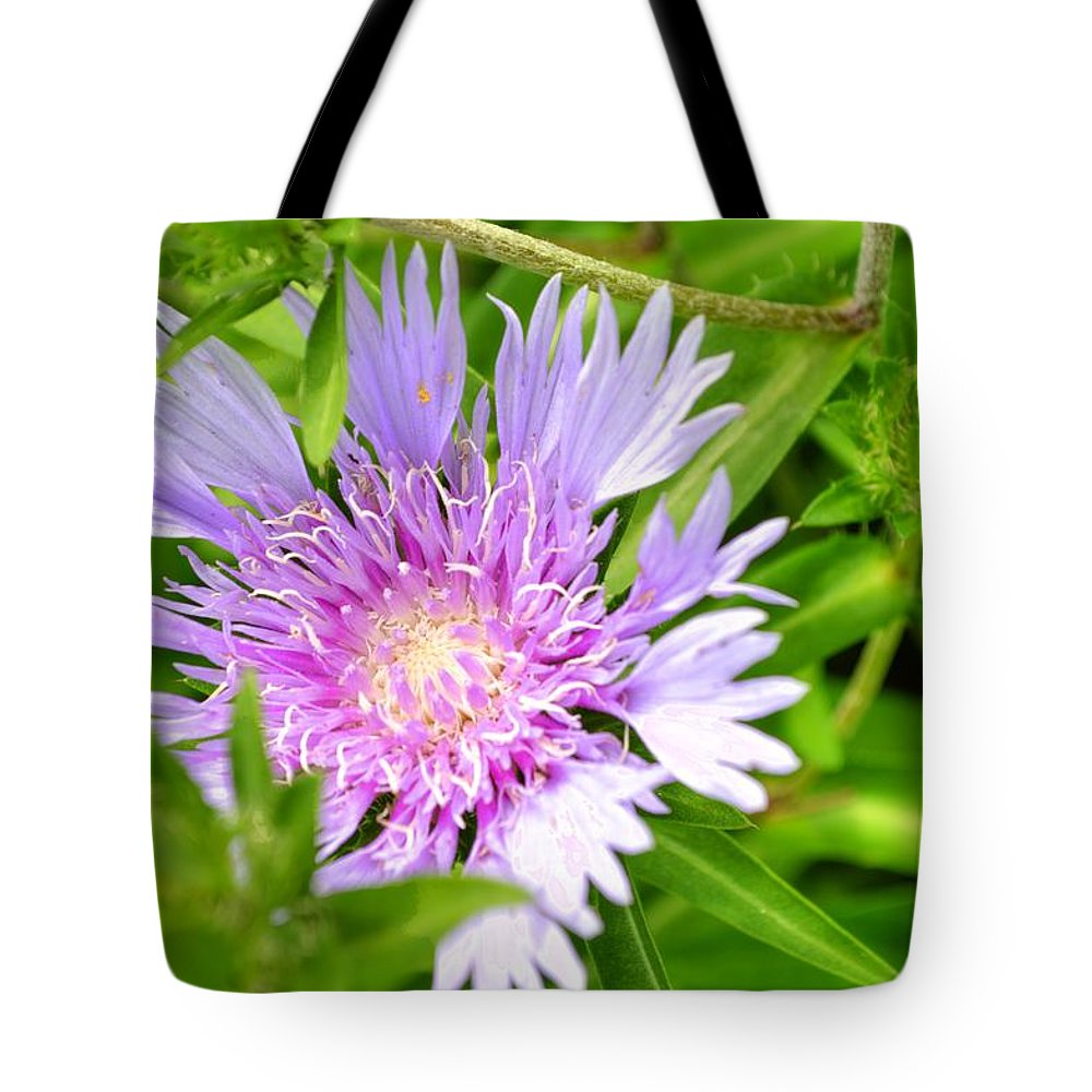 Purple Tote Bag featuring the photograph Purple Bloom by Linda Covino