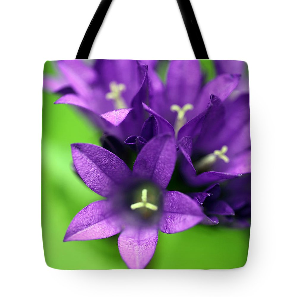 Floral Tote Bag featuring the photograph Purple Blooms by Amanda Barcon