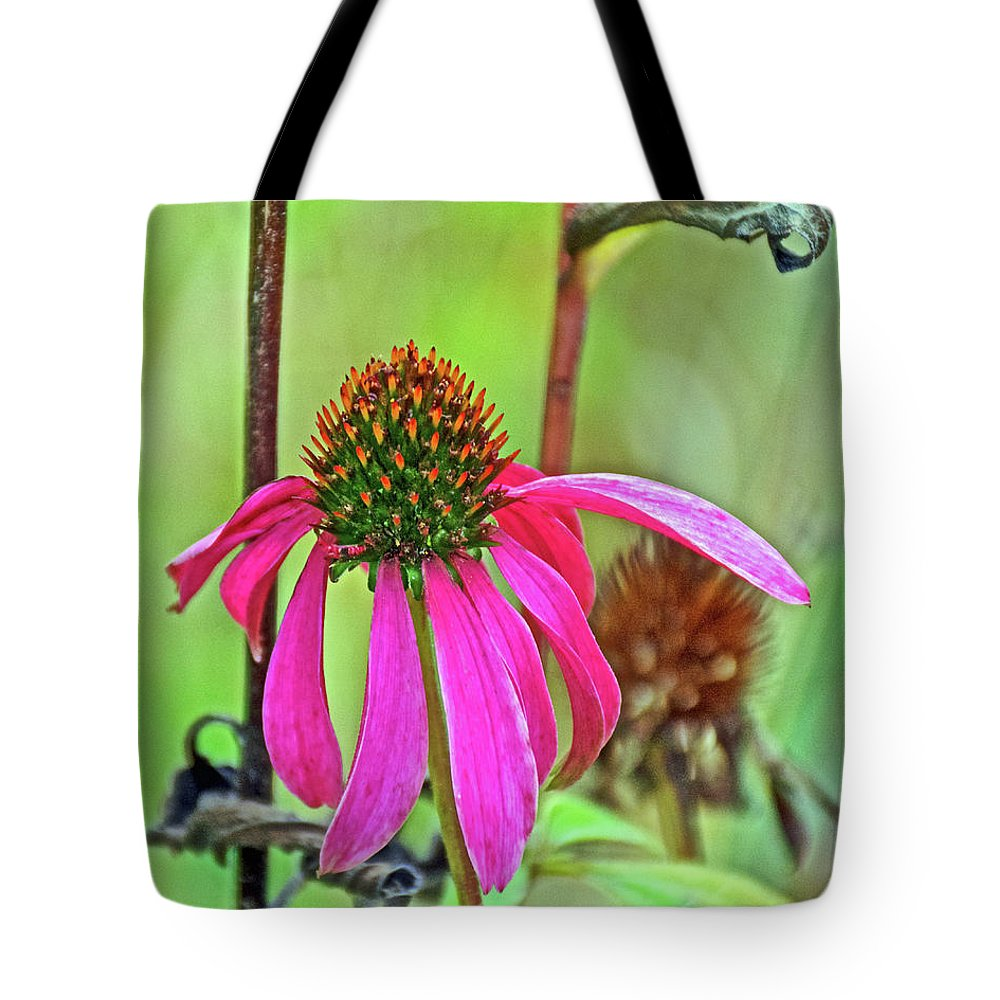 Purple Coneflower Along White Pine Trail Near Rockford Tote Bag featuring the photograph Purple Coneflower Along White Pine Trail In Kent County, Michigan by Ruth Hager
