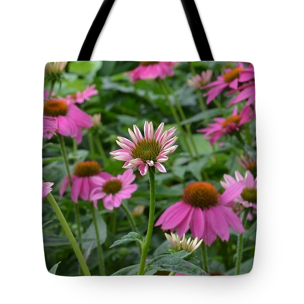 Wildflower Tote Bag featuring the photograph Purple Coneflower by Shelley Wood