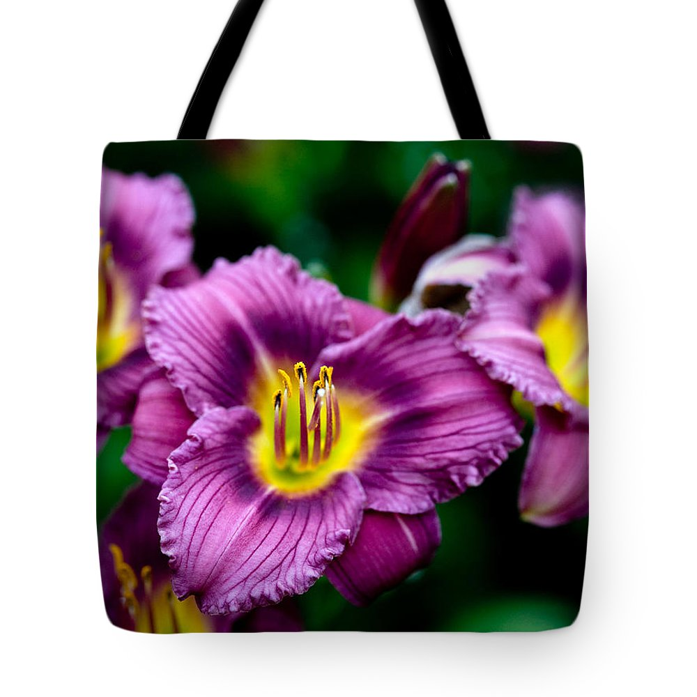 Flower Tote Bag featuring the photograph Purple Day Lillies by Marilyn Hunt
