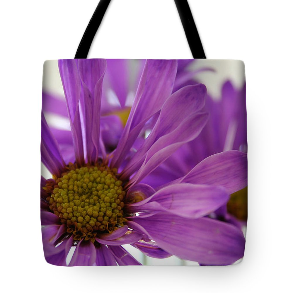 Flowers Purple Macro Daisy Spring Yellow Digital Photography Tote Bag featuring the photograph Purple Delight by Linda Sannuti