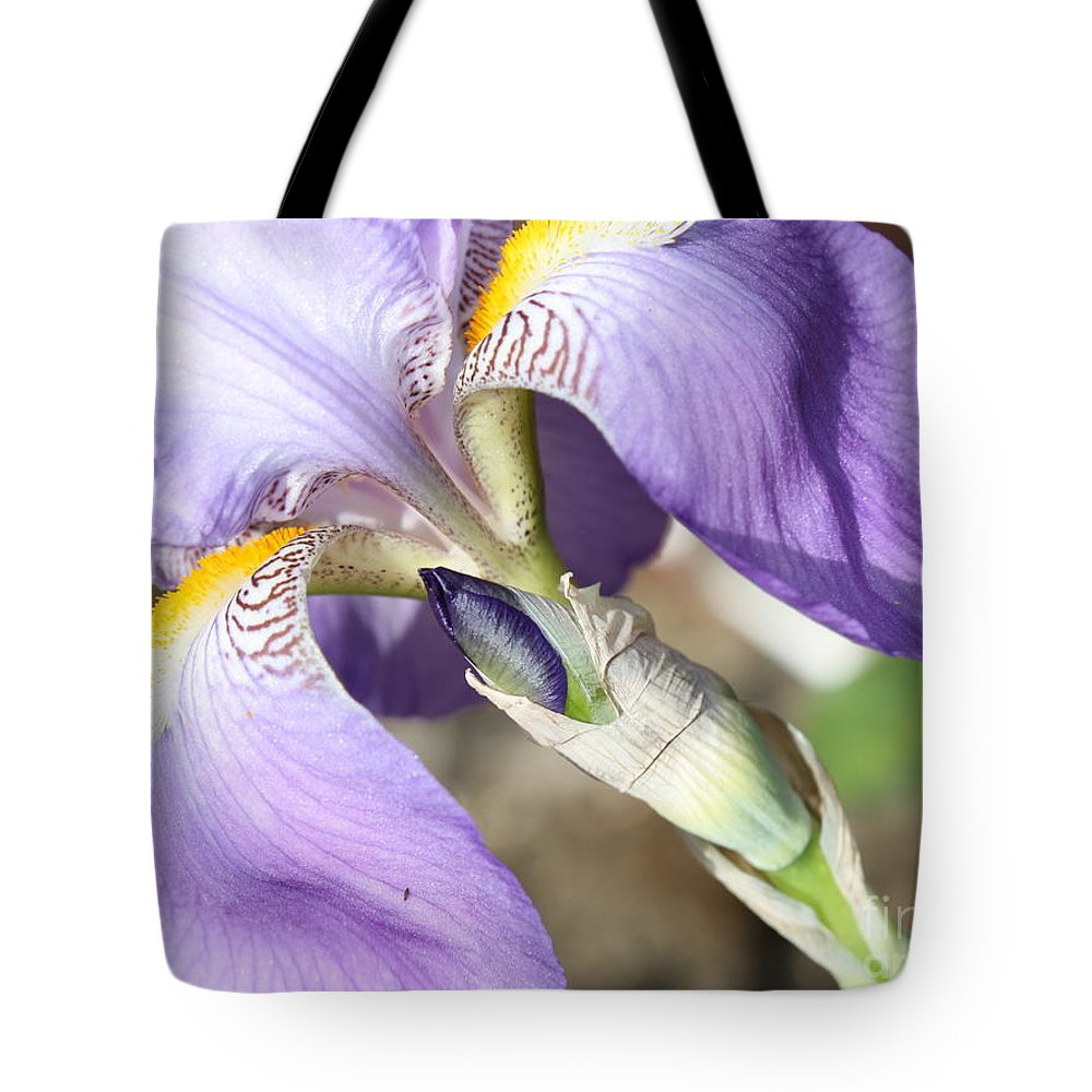 Iris Tote Bag featuring the photograph Purple Iris With Focus On Bud by Carol Groenen