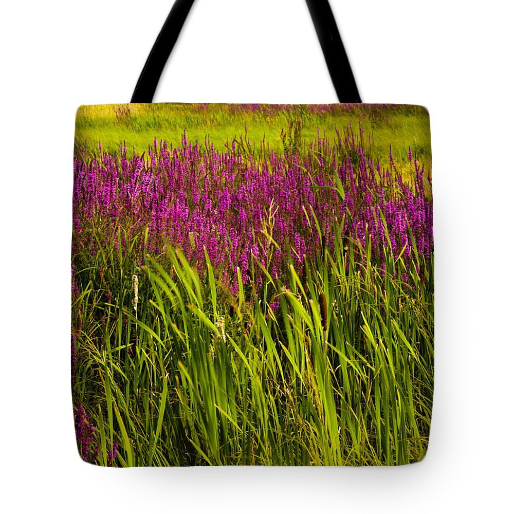 Wildflowers Tote Bag featuring the photograph Purple Loosetrife And Cat-tails by Irwin Barrett