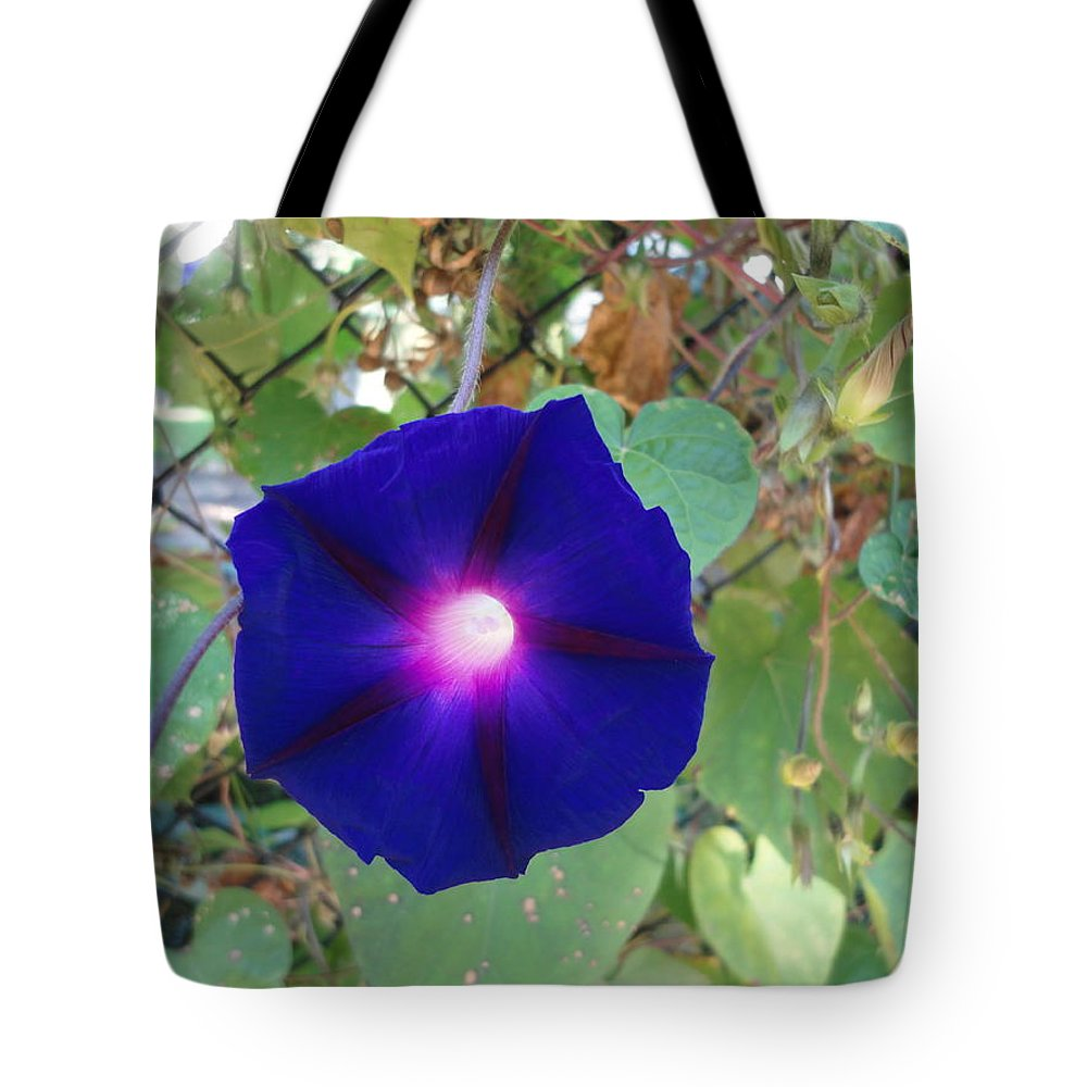 Flowers Tote Bag featuring the photograph Purple Morning Flower by Aurora Bautista