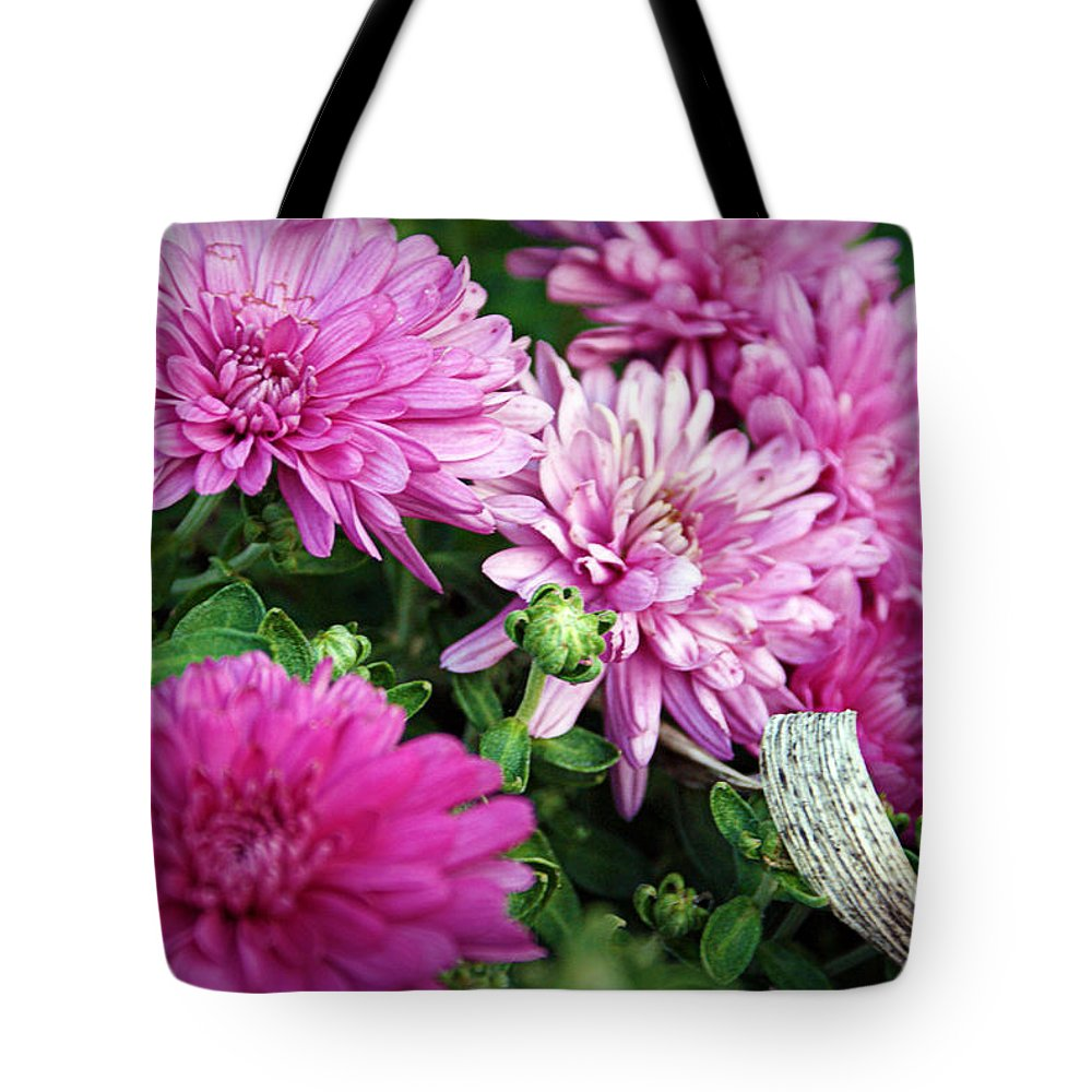 Flowers Tote Bag featuring the photograph Purple Mums by Cricket Hackmann
