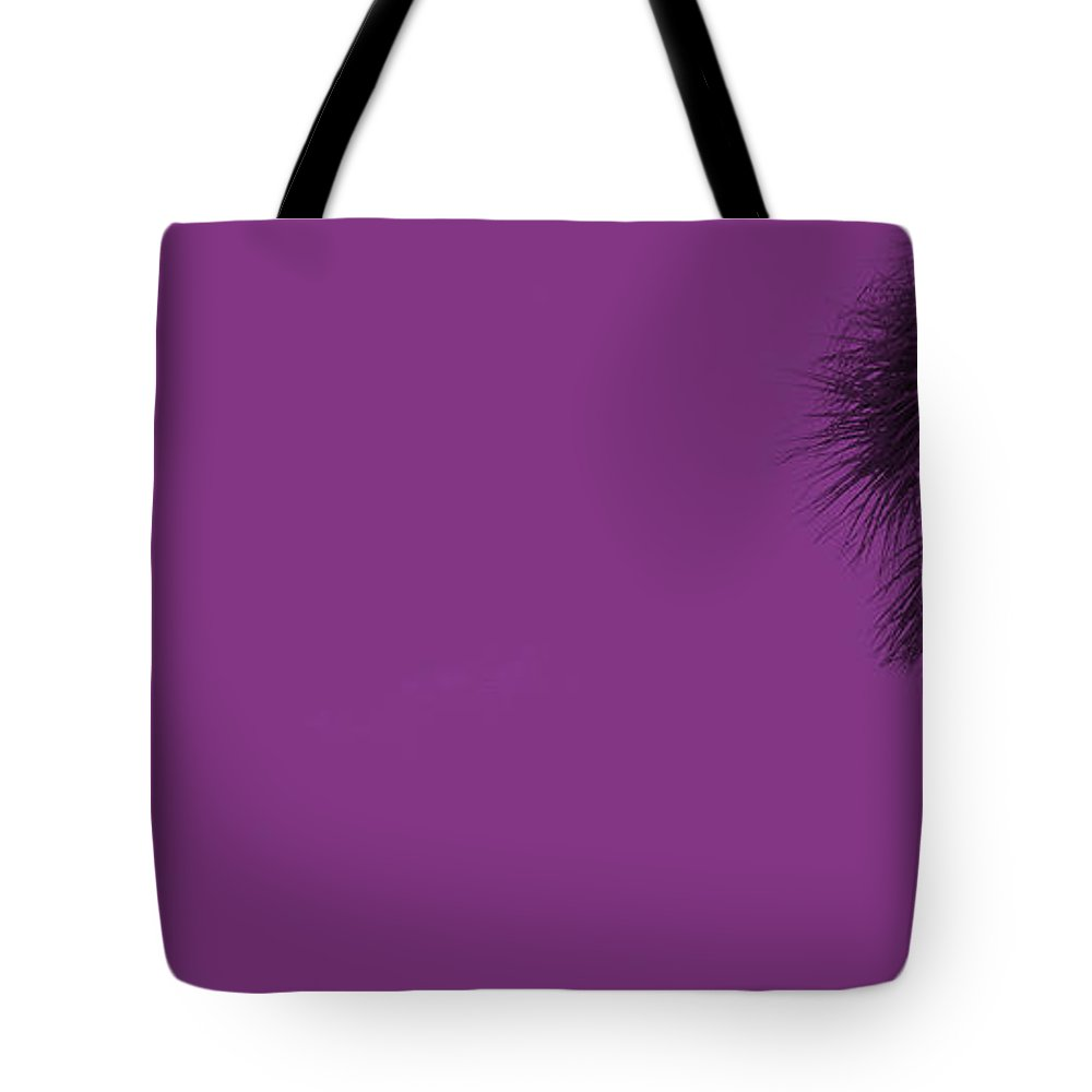 Florida Tote Bag featuring the photograph Purple Palm by Ed Smith