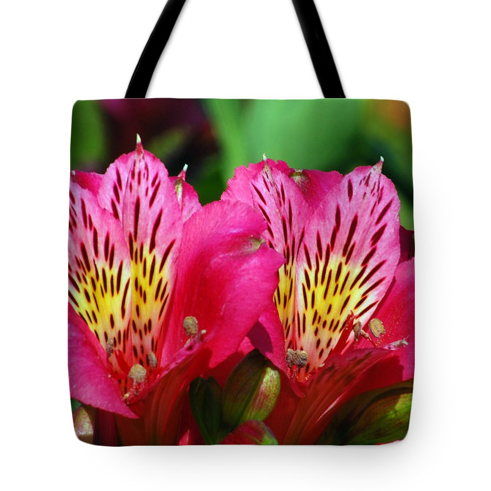 Peruvian Tote Bag featuring the photograph Purple Peruvian Lily by Amy Fose
