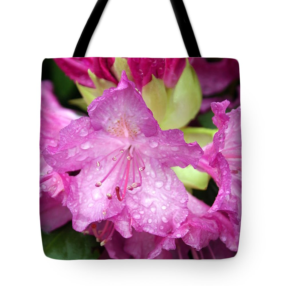 Fllowers Tote Bag featuring the photograph Purple Pink by Marty Koch