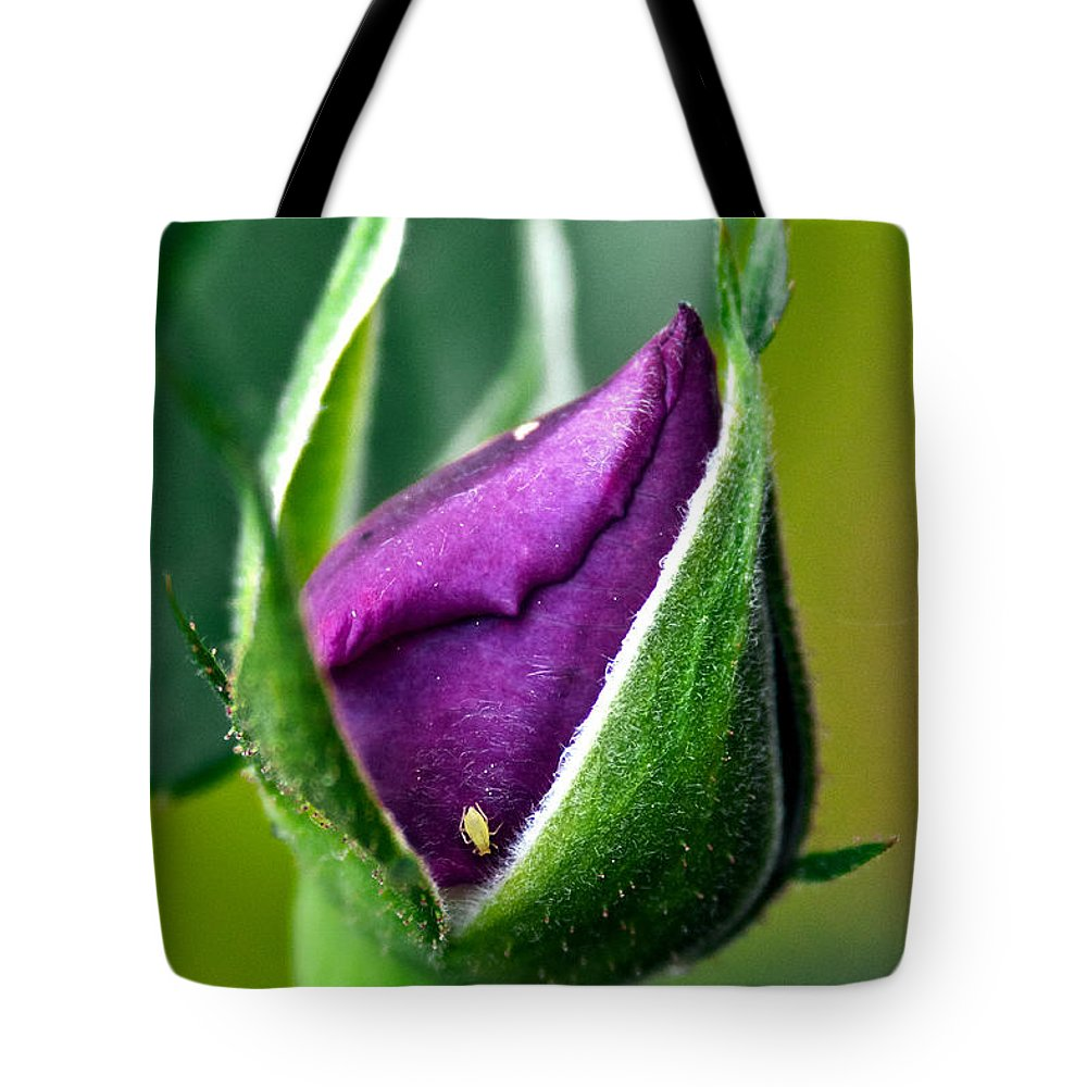 Rose Tote Bag featuring the photograph Purple Rose Bud by Christopher Holmes