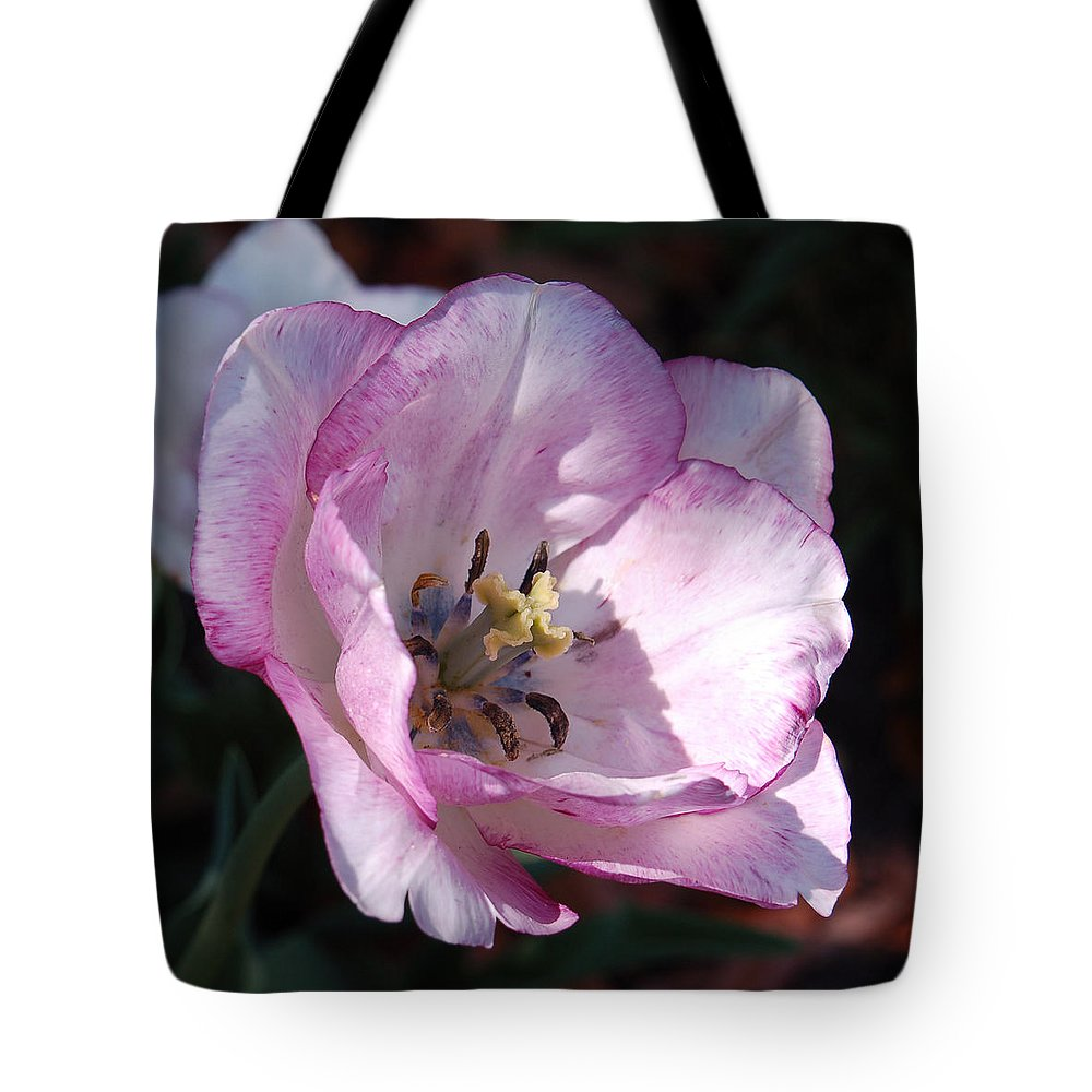 Purple Tote Bag featuring the photograph Purple Tulip by Suzanne Gaff