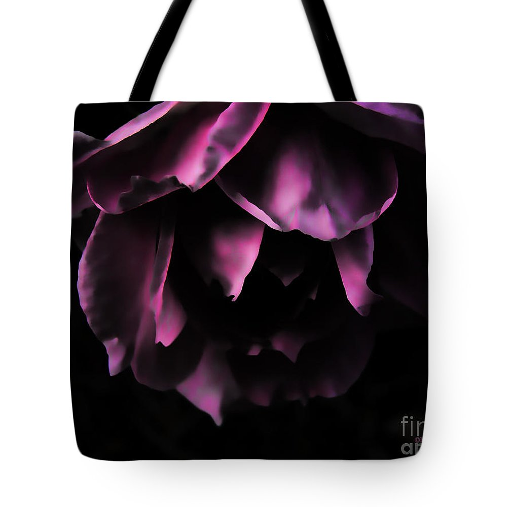 Roses Tote Bag featuring the photograph Purple Velvet Rose by Kevin J McGraw