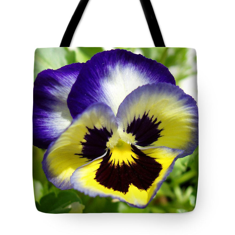 Pansy Tote Bag featuring the photograph Purple White And Yellow Pansy by Nancy Mueller