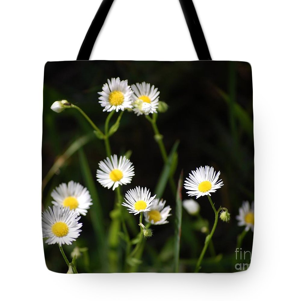 Digital Photo Tote Bag featuring the photograph Pushing Up..... by David Lane
