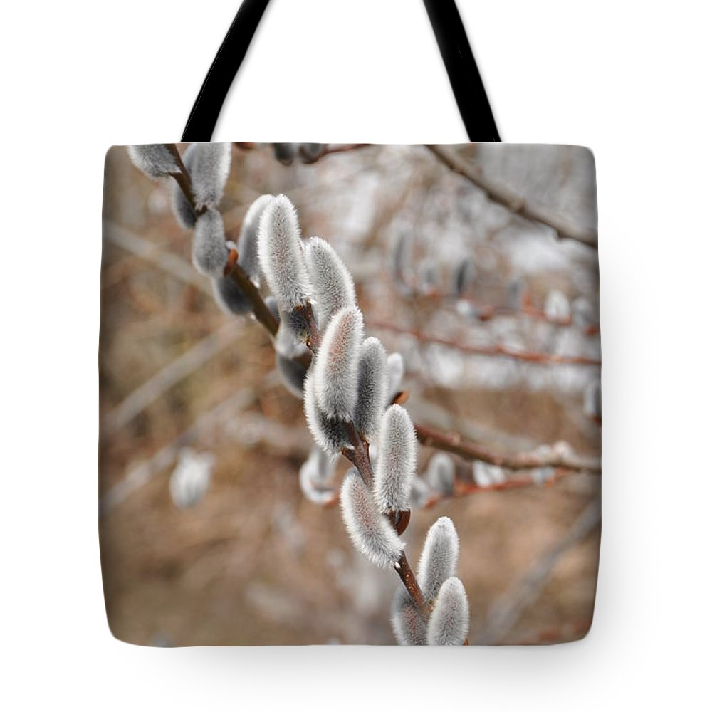 Flower Tote Bag featuring the photograph Pussy Willow 2 by Rich Bodane